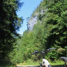 Der Weg führt entlang des Naturparks Untersberg.